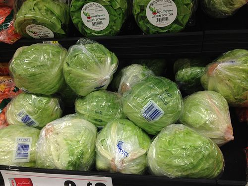 Ice berg lettuce for calming:Not very nutritional, but it makes a good toy for beating up – and the white substance it secretes will calm them.