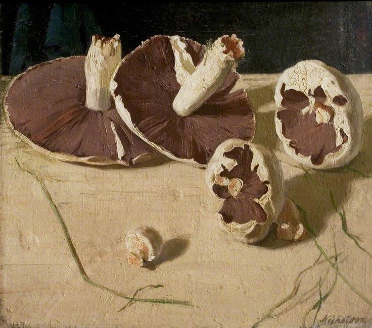 Mushrooms by William Nicholson Nottingham City Museums and Galleries Date painted: 1927