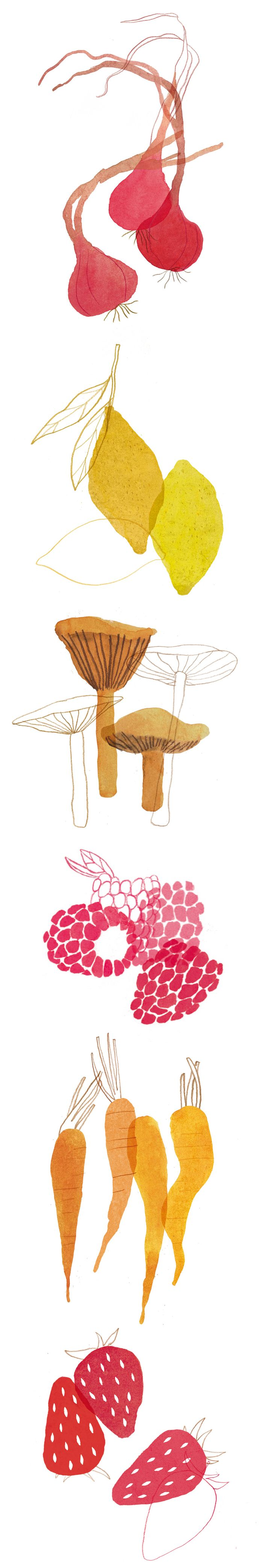 vegetable, fruit, illustration, by Nanna Prieler, layer, collage, ink, food, drawing, mushrooms, carrots, editorial, summer, colour, print