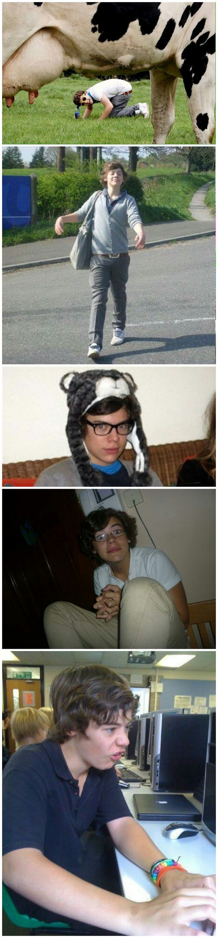 This is Harry Styles ❥  Think twice before you are mean to the dork at school