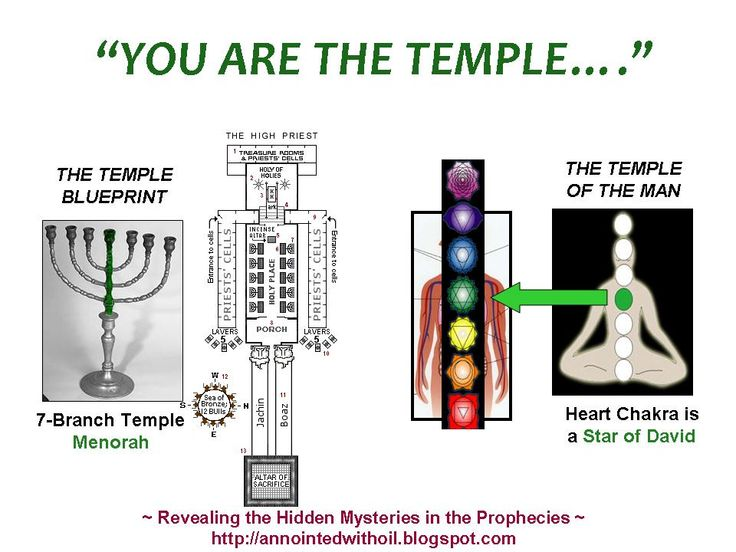 The Holy of Holies in Our Skulls | GnosticWarrior.com