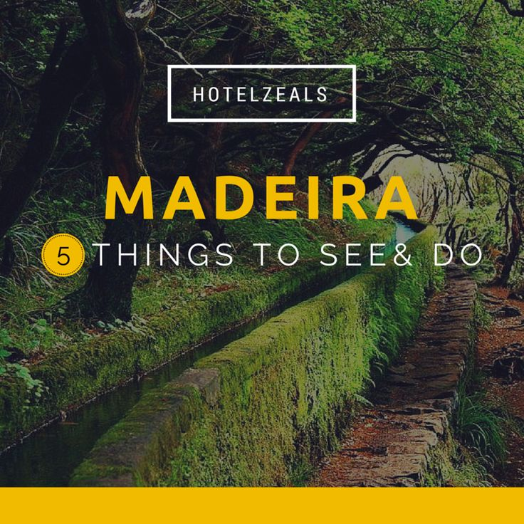 5 Things you must see and do at Madeira Island Portugal
