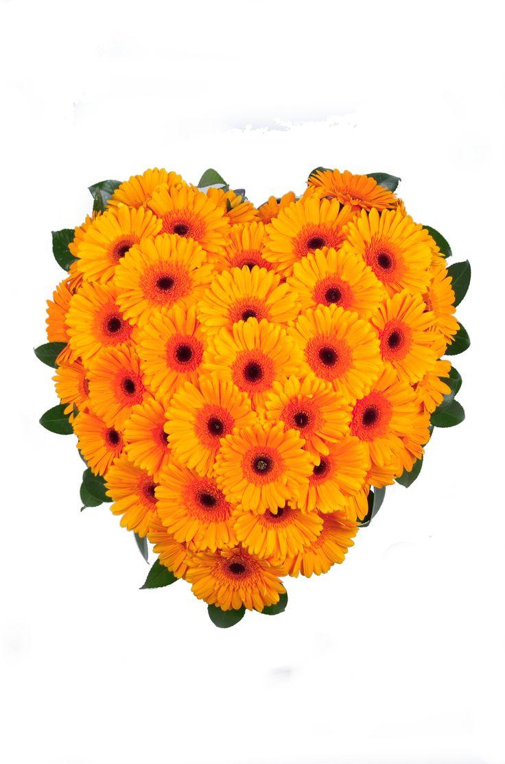 Orange Gerbera Heart Wreath - Donvale Flower Gallery