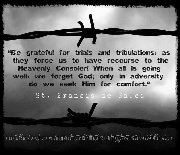 190 best images about St Francis de Sales on Pinterest