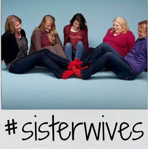 Fans of the Kody Brown family on TLC hit series SISTER WIVES no doubt cheered with them last week when a judge finally granted the adoption they had been seekin