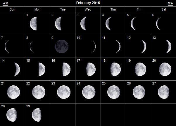 http://god-2016.com/wp-content/uploads/2015/10/moon_feb_2016.jpg