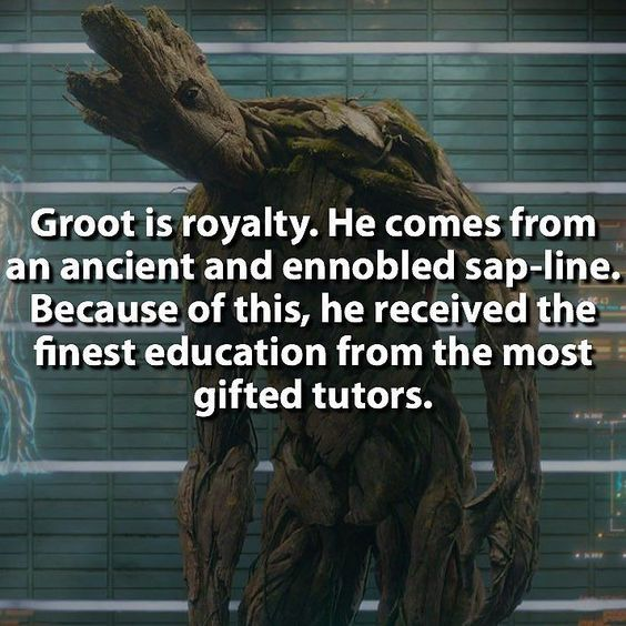 lol i wanna know how the heck Rocket and Groot met