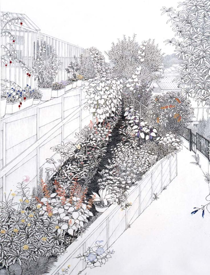 IN LOVE with this artist and her work! It's amazing what you can do with pen, paper, pencil, some logic and imagination | Traces of Nature in Japanese Suburbs: Works by Yukiko Suto | Socks-studio.com