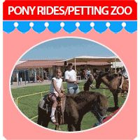 Pony Rides and Petting Zoo Rentals from A Child's Joy
