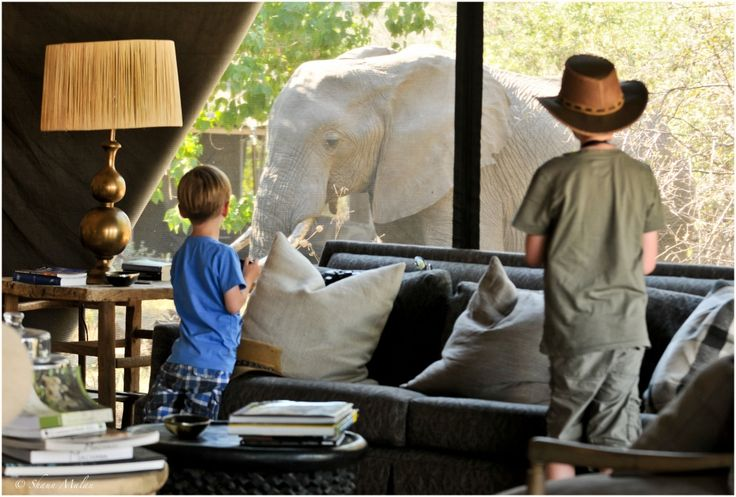African family safari in Botswana  #MachabaCamp #Botswana  www.safari2africa.com