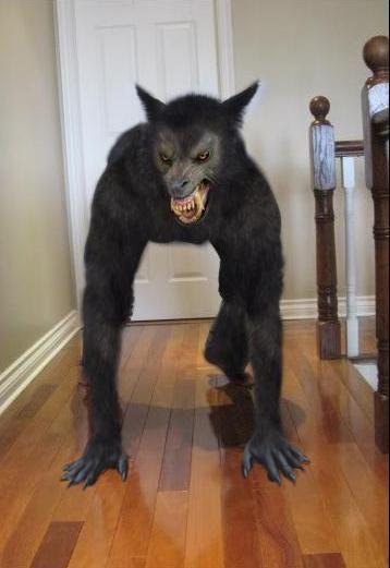 Best 25 Werewolf Costume Ideas On Pinterest