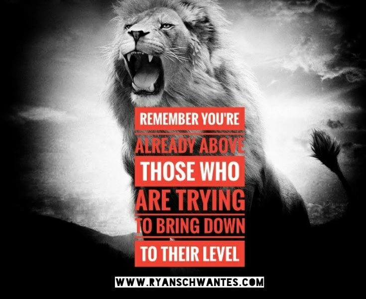 Awesome quote right here. Never let people bring you down. Stand strong! #motivationalminded #motivational #motivation #strength #success #motivationalquotes #postivevibes   #inspirational #InspirationalQuotes  #nevergiveup