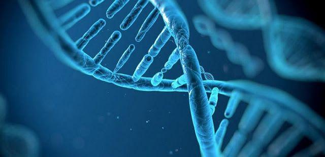 Η επανεμφάνιση λοιμώξεων της «βικτωριανής εποχής» στη Βρετανία προβληματίζει τους ερευνητές