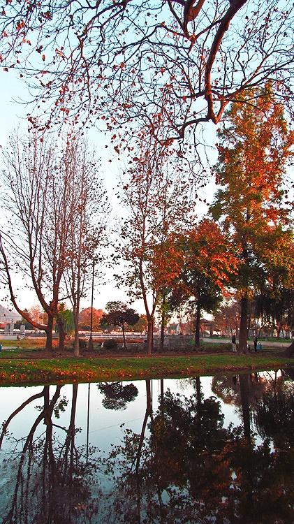 Esmeralda Lagoon Park.  Los Angeles, Chile.