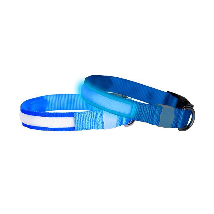 COLOUR CODE LED DOG COLLAR - BLUE MOON LARGE