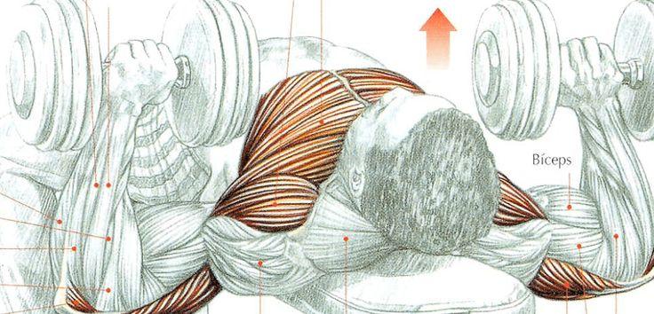 Ejercicios en casa rutina de acondicionamiento muscular