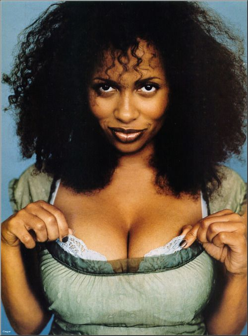 Lisa Nicole Carson, I've been loving her hair since the 90's and Ally McBeal.  Wonder what she's doing now?