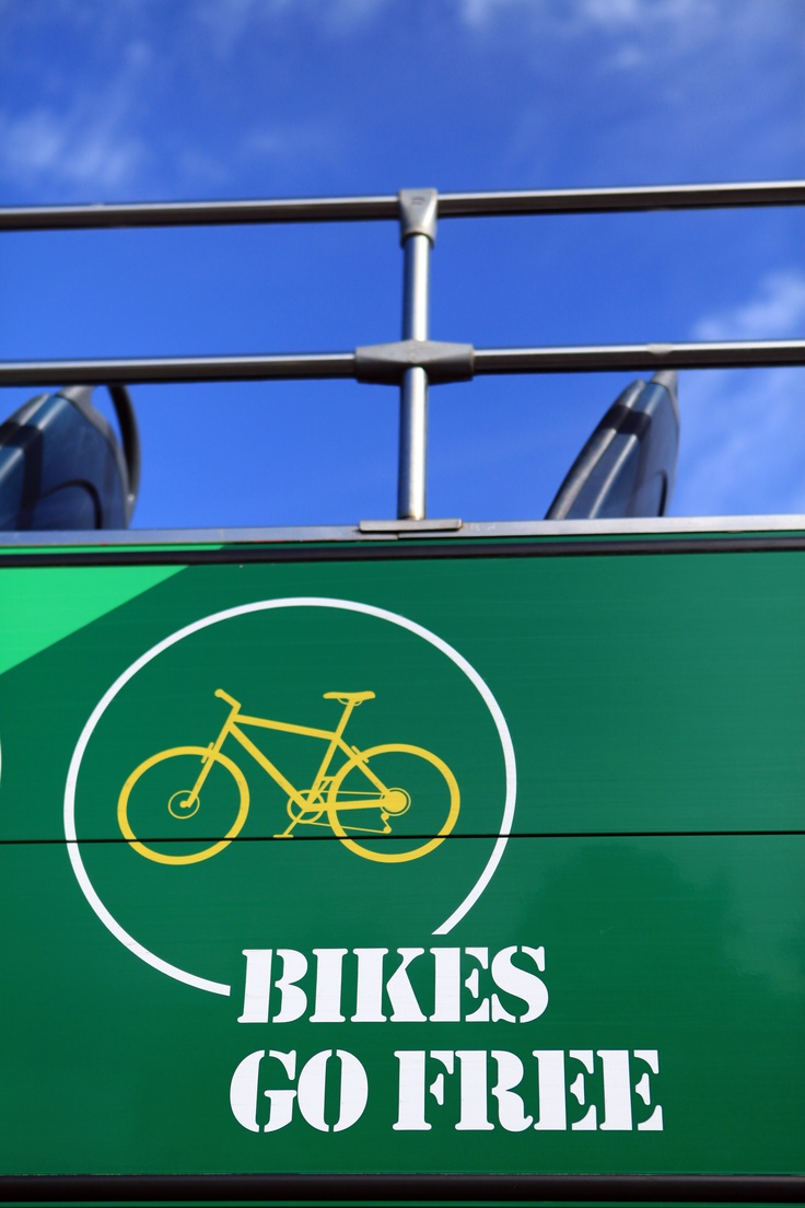 Bikes go FREE on the New Forest Tour - there's space for up to 4 cycles