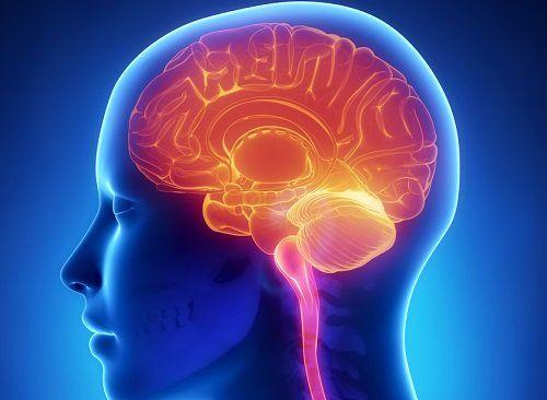 Mira cómo puedes aumentar la memoria hasta un 90%, incluso rejuvenecerás tu cuerpo, todo lo que necesitas es esto que lo tienes en tu hogar.