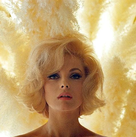 Virna Lisi, photo by Douglas Kirkland, 1965, Los Angeles. I always laugh when people assume this is a MM photo.