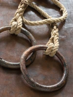 Vintage Gym Rings
