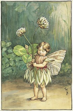 Illustration for the White Clover Fairy from Flower Fairies of the Summer.