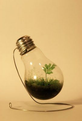 What You Can Do With Old Light Bulbs (30) 20
