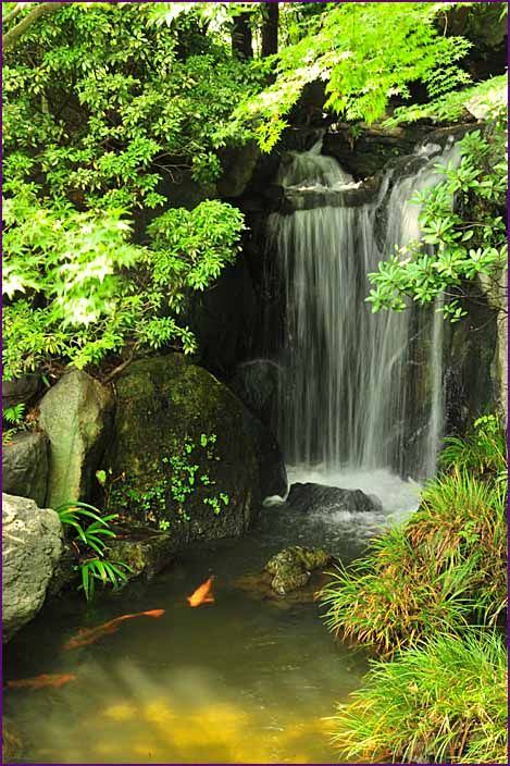 Best 25 Japanese Water Gardens Ideas Only On Pinterest