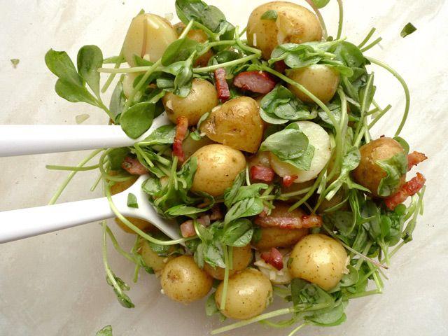 salade met postelein klein
