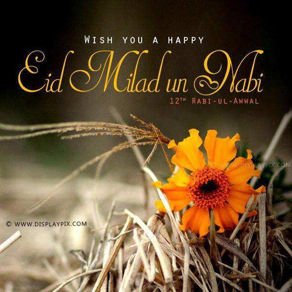 Eid Milad Un Nabi Mubarak Profile Pictures tumblr