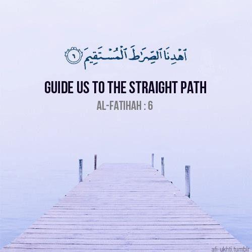 www.professionalmuslim.com ''Guide us to the straight path'' Surah Al Fathia:6