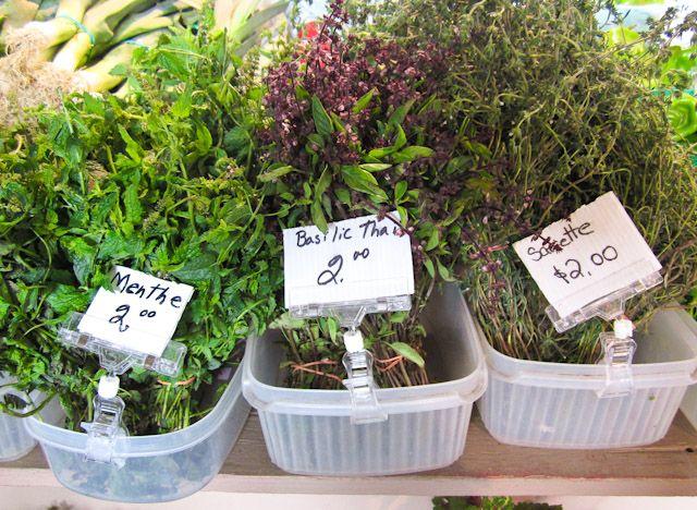herbs at Jean-Talon market montreal