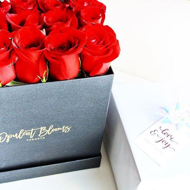 Die besten 25+ Next day delivery gifts Ideen auf Pinterest ...