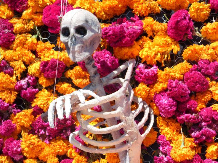 calavera flores