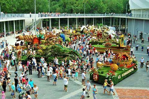Flower Carnival at the Stadium 2014