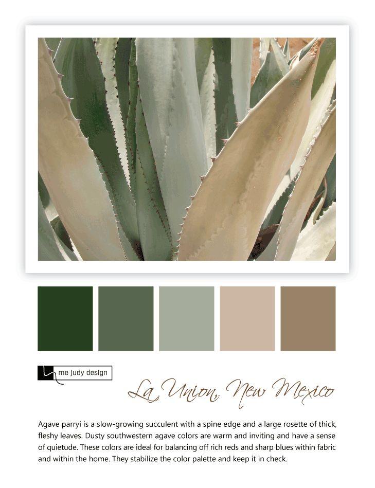 25 best ideas about southwest decor on pinterest for Southwest desert color palette