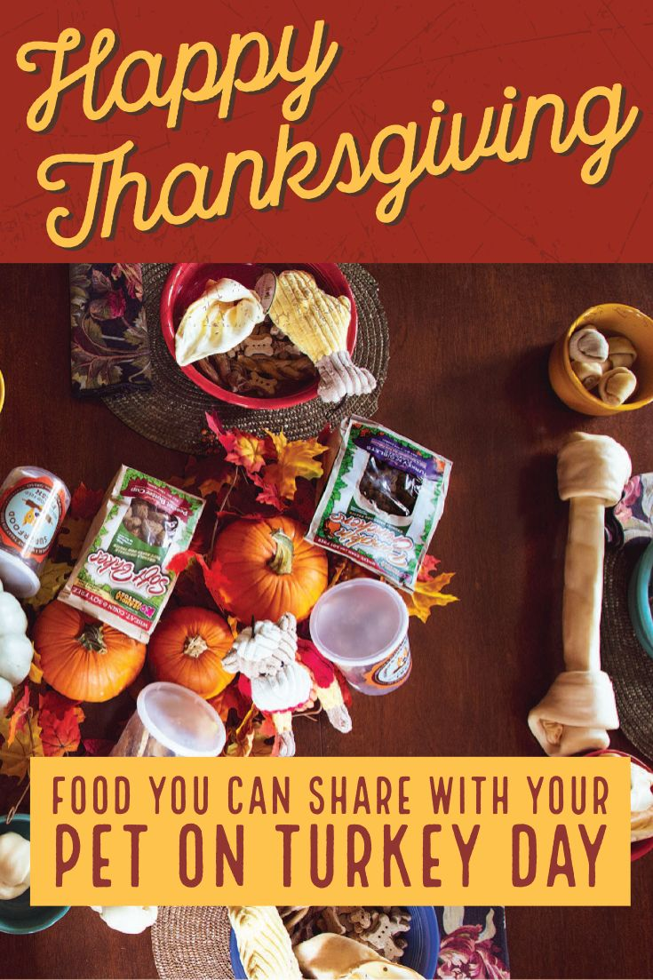 Sweet potato, veggies and raw turkey bones are tasty
