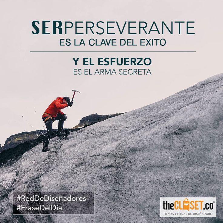 Ser perseverante es la clave de éxito y el esfuerzo es el arma secreta #FelizLunes #FraseDelDia #RedDeDiseñadores
