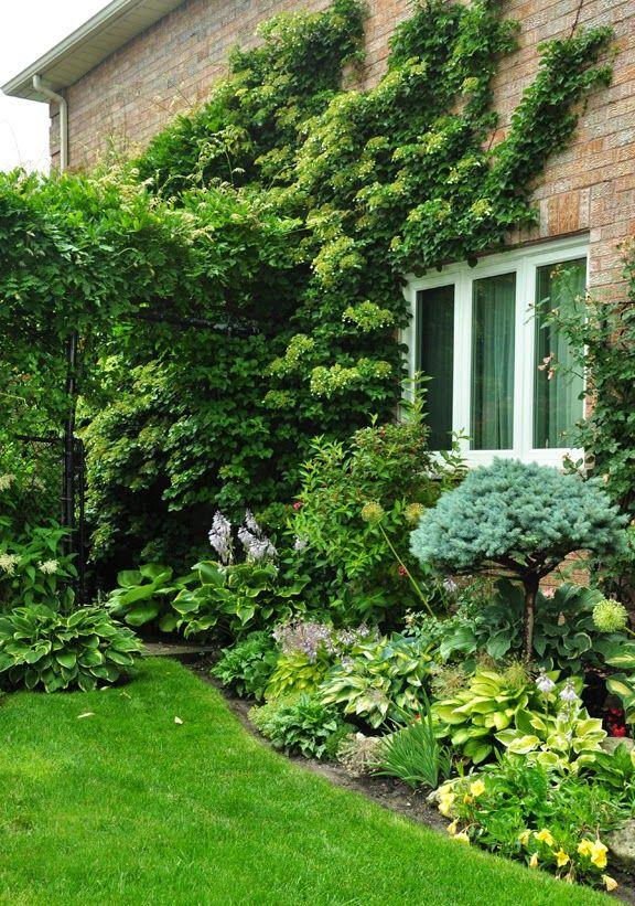 127 best colorado style landscape design images on for 50ft garden design