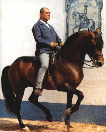 Mestre Nuno Oliveira is one of the greatest horsemen of our times. He said that he rode horses because he loved them. Read about his life here.
