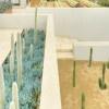 """""""Arid Rooftop"""" - Jenny Smith Gardens"""