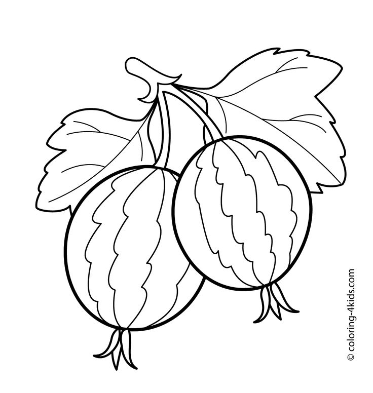 500 best images about food  drink and cooking coloring