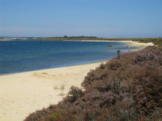 Terra Estreita beach on land side #Santa #Luzia #Tavira