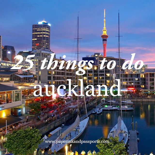 article: 25 things to do in auckland