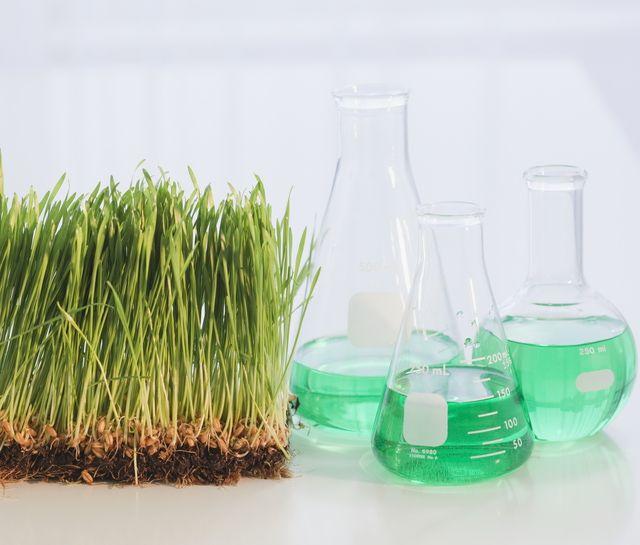 Organic Chemistry Is All Around Us Organic Chemistry Organic Chemistry Study Chemistry
