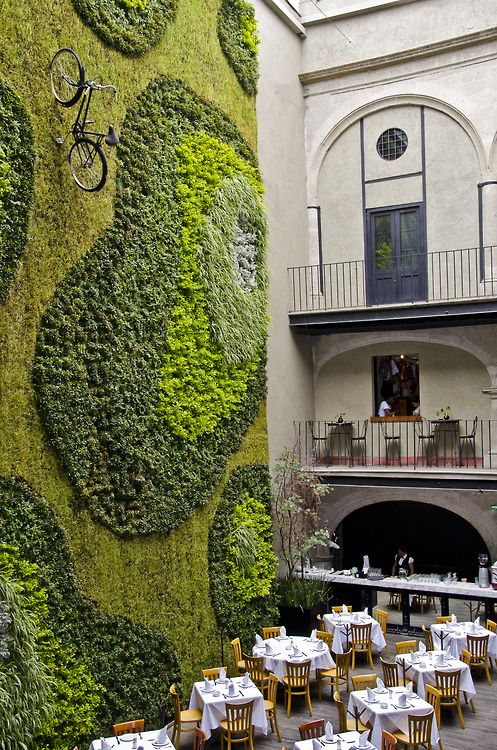 Up for a ride in Mexico City? Beautiful vertical gardening :)