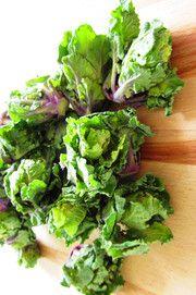 Flower sprout oftewel bloemspruit is de naam van een nieuwe groente in Nederland. Het is een kruising tussen spruitjes en boerenkool met de typische spruitensmaak en de zoete, notige, smaak van kool. Het is een klein groen-paars minikooltje met krullende bladeren. Flower sprouts zien er niet alleen smakelijk uit, maar zijn ook nog eens erg gezond omdat ze veel vitamine B, C en E bevatten. Ze helpen je energie uit voedsel op te slaan en zijn goed voor je afweersysteem.