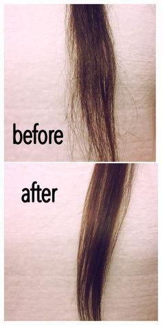 Best 25+ Hair repair ideas on Pinterest | Diy hair repair mask ...