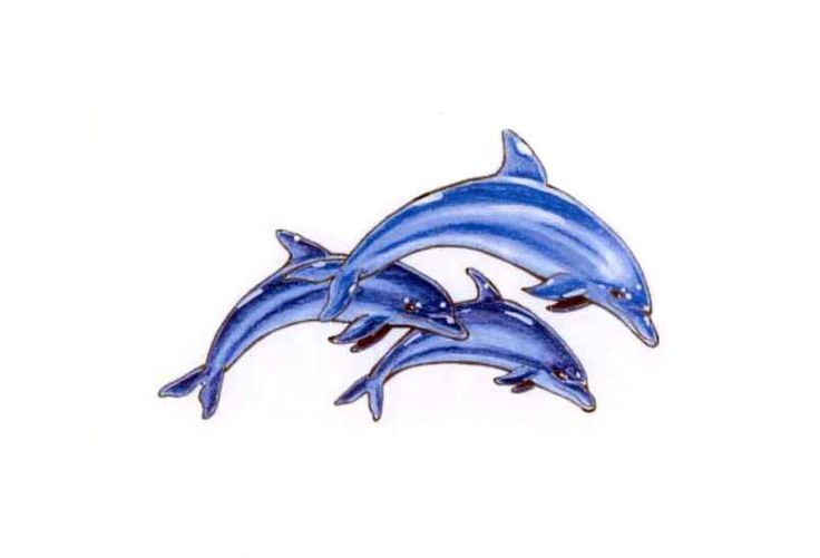 dolphin tattoo dolphin tattoo designs come form many sources and