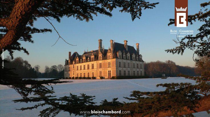 Le Château de Beauregard à Cellettes (41) www.bloischambord.com